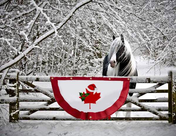 Christmas in Canada 150 B